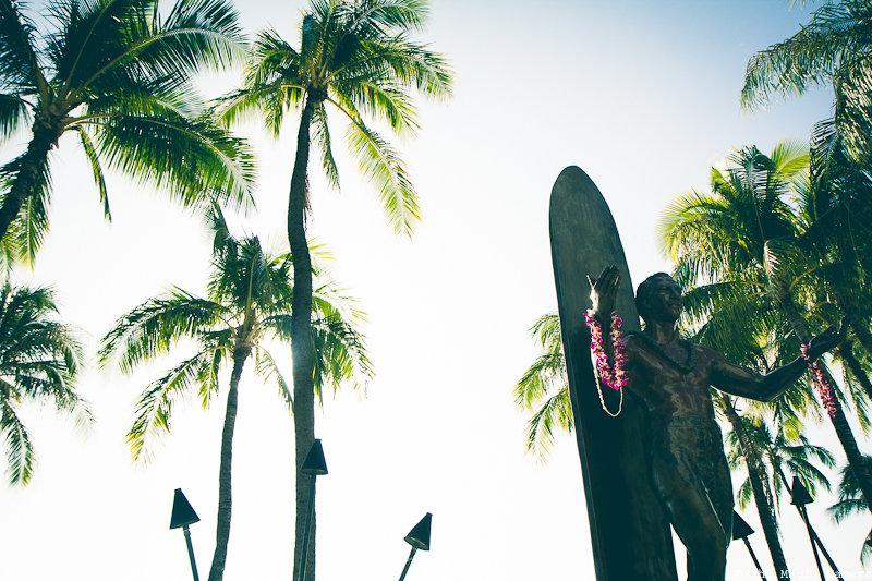 The Magic Camera - Hawaii (4 of 102)