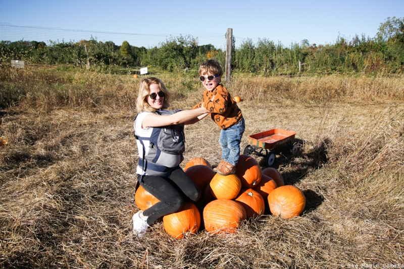 pumpkin-patch-oct-2016-14