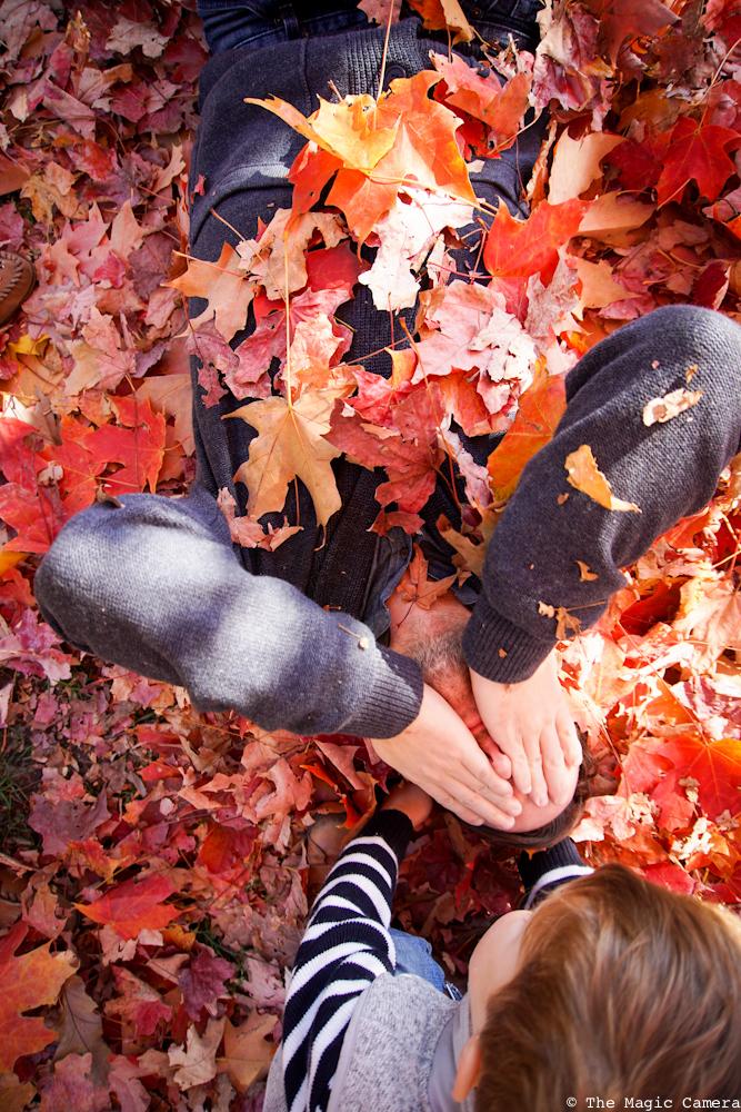 autumn-oct-2016-14